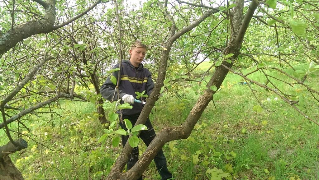 студент гр. 21С Егор Баранов