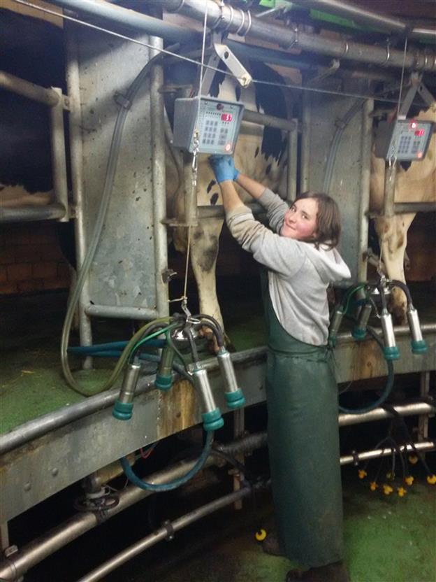 Магистрантка Анна Магрычева проходила практику в Германии в 2015 году, сейчас она находится на  повторной стажировке в немецком КФХ